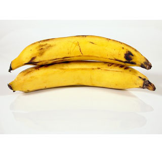 Unlike dessert bananas, Plantains can be eaten at various stages of ripening.  (Photo: Contributed)