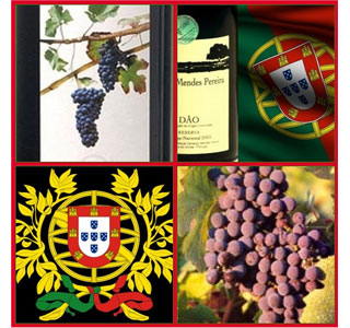 One of the oldest wine producing regions in the world is Portugal.  (Photo: Flickr user, aurelia)