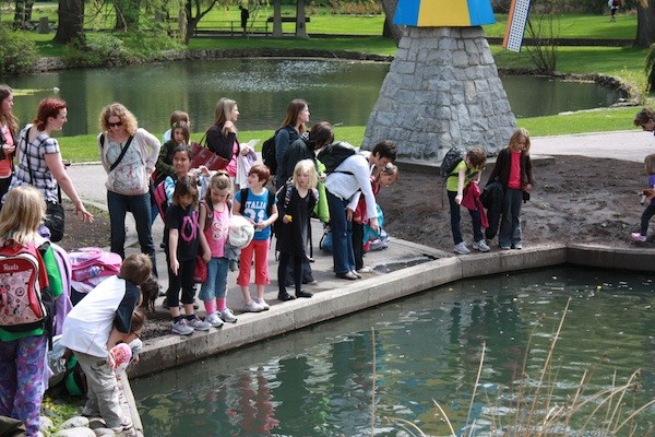 1000 new residents make a splash vernon news for Koi pond kelowna