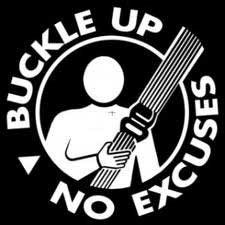 How Much Is A Seatbelt Ticket >> Wear seatbelt or lose (big time!) - Law Matters - Castanet.net