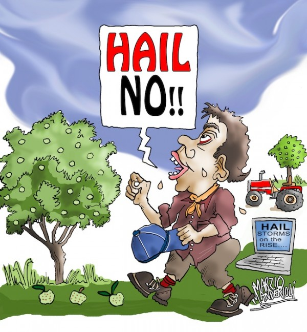 hail storms - cartoons by marzio