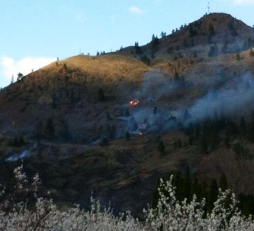 forest fire near keremeos - penticton news