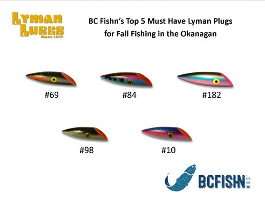 Shore fishing with a bottom line set up - Let's Talk Fishn