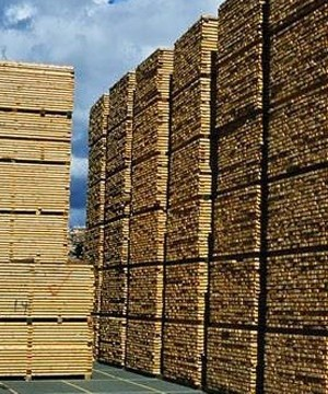 The U.S. National Association of Home Builders says duties or volume caps on imported lumber will raise the price of lumber, adding more than $1,300 to the cost of a new single family home.
