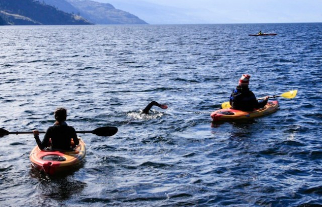 Epic swim a world record penticton news - West vancouver swimming pool schedule ...