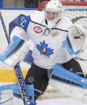 The Penticton Vees closed out their regular season on a winning note Friday, blanking the Chilliwack Chiefs 3-0.