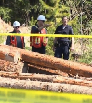 Transportation Safety Board investigators check logging train derailment on Vancouver Island.