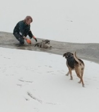 A woman is being hailed a hero for saving a dog from a icy death.