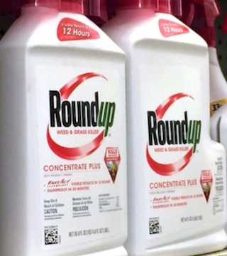 Attorneys for Monsanto said there was no evidence that Monsanto executives were malicious in marketing Roundup.