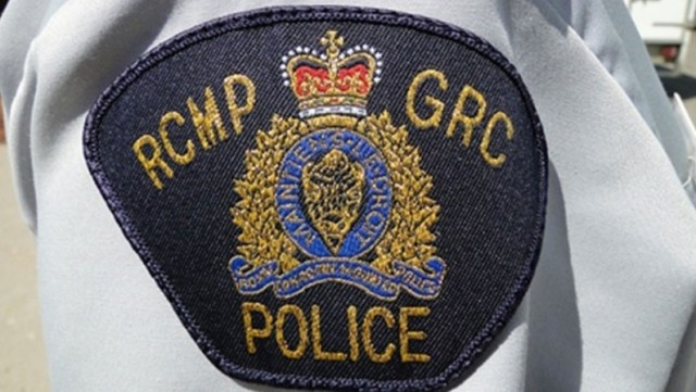 Terror charge laid against Ontario man