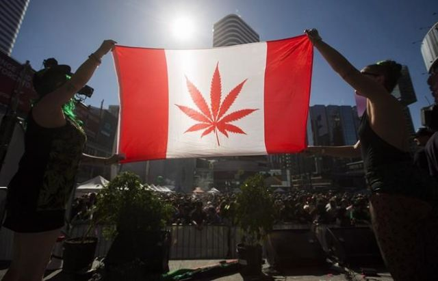Things To Know About Canada's Plan To Legalize Weed