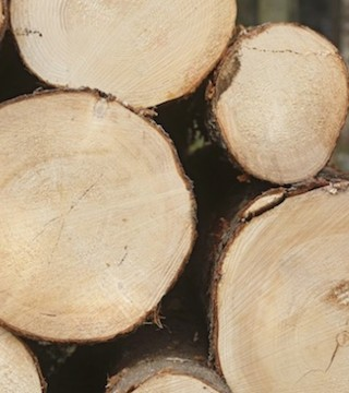 Canada's forest industry braces for more U.S. action on softwood lumber.