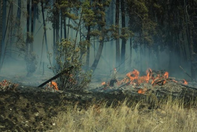 Evacuation order lifted for 600 people near Kelowna-area BC wildfire