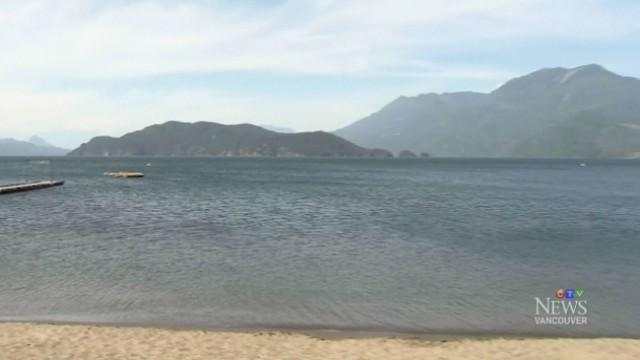 Teen boy, young man dead in Harrison Lake drowning