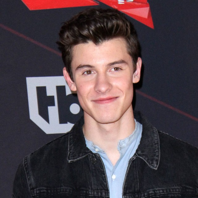 Drake's Security Team Almost Detained Shawn Mendes