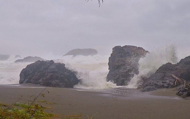 Storm watching at Pacific Rim National Park Reserve