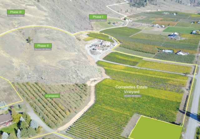 letter to mom winery expanding penticton news castanet net 12659