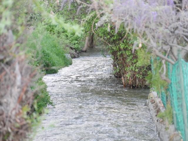 A call for creek dredging - Summerland News - Castanet net