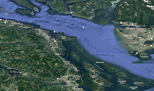 Remains of human foot found stuck in a logjam on Gabriola Island