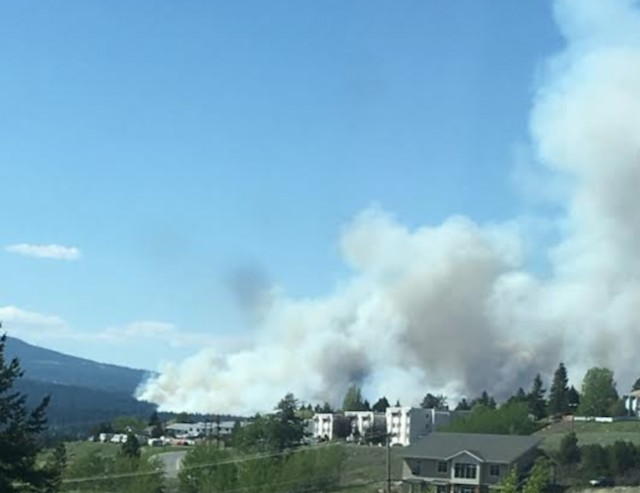 Forest fire near Logan Lake
