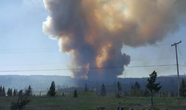 Logan Lake wildfire 12 hectares in size
