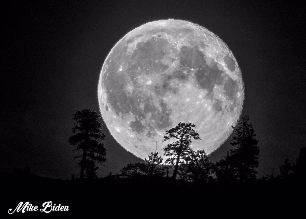 blood moon january 2019 kelowna - photo #23