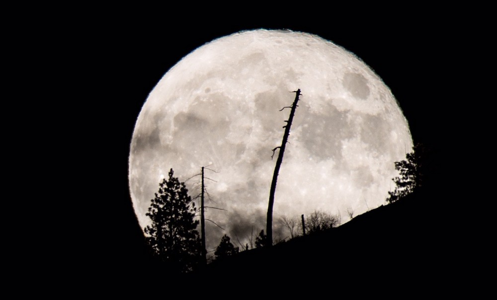blood moon january 2019 kelowna - photo #25