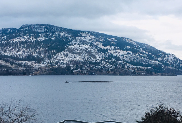 Log booms being towed to closed Tolko mill for redistribution - Kelowna News