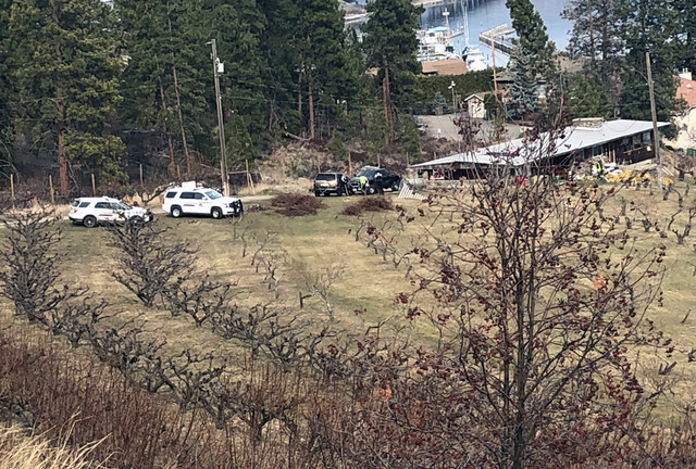 1 hurt in orchard accident - West Kelowna News