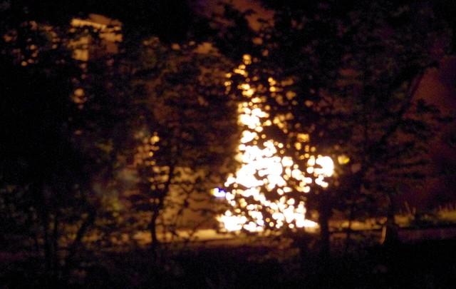 Car fire snuffed quickly - West Kelowna News