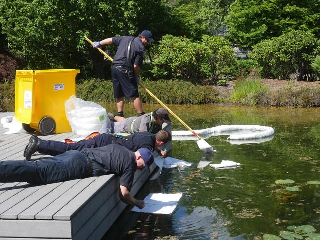 Tar substance in koi pond penticton news for Koi pond kelowna