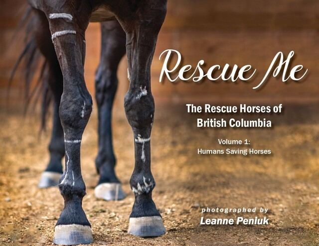 Knutsford woman collaborates with team to create book about B.C.'s rescue horses - Kamloops News