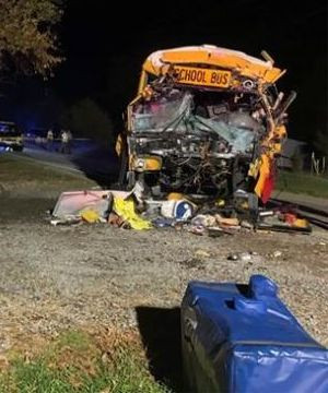 School bus driver and seven-year-old girl killed in Tennessee crash.