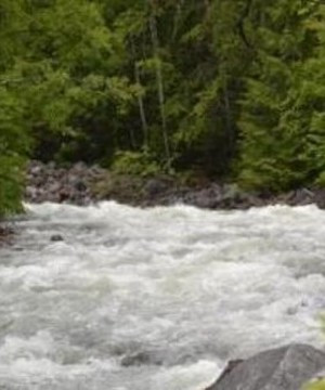 More flooding evacuation orders issued in Salmo area of Central Kootenays.