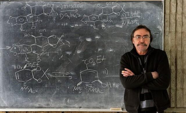 Professor hits back at critics of 'diversity' essay in top journal - Canada News