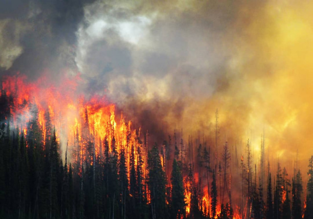 Photo gallery of Solco Creek wildfire, east of Okanagan Falls (Penticton)