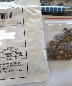 More than 750 reports of Canadians receiving unrequested seeds.