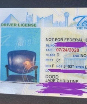 Tennessee woman receives new driver's licence with photo of empty chair.