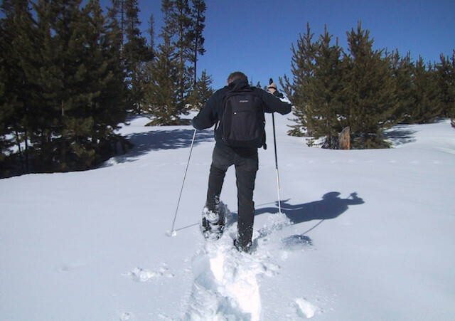 VSAR urges snowshoers to be backcountry ready after search called off (Vernon)