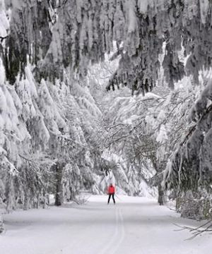 Freezing weather hits much of Europe, with temperatures down to -28 C in Poland.