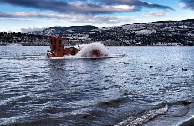 Milfoil harvesting in Okanagan lakes has been a success - but more required - Vernon News