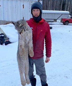 Conservation Service says picking up lynx by scruff a risky move.