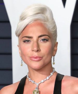 Lady Gaga offers $500,000 reward for stolen dogs after her dog walker attacked.