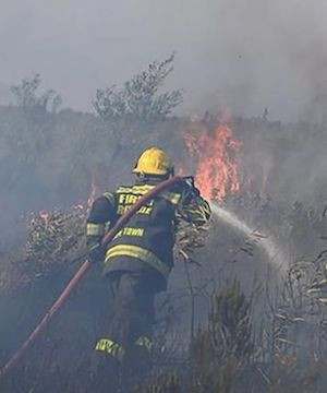 Residents evacuated as South Africa wildfire grows on Cape Town's Table Mountain.
