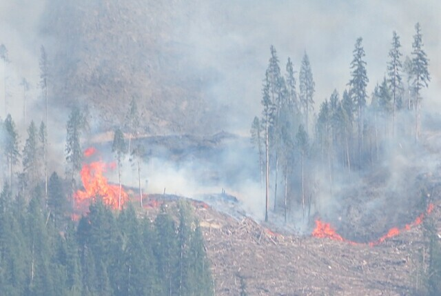 RDNO has expanded evacuation orders and alerts around the Bunting Road Wildfire